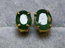 Smaragdörhängen008