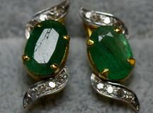 Smaragdörhängen002