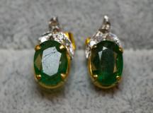 Smaragdörhängen010