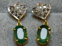 Smaragdörhängen011